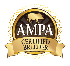 Certified Breeder Square White Background Transparent